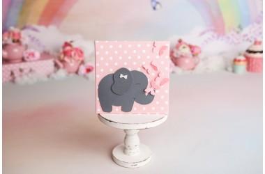 Tablou cu elefant gri